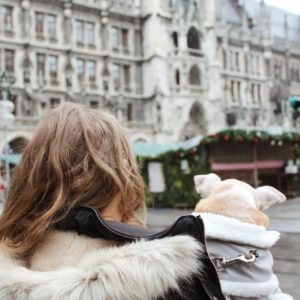 Munich Christmas Market. Marienplatz.