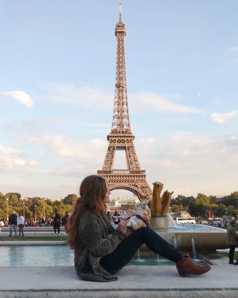 Paris, France. dog.