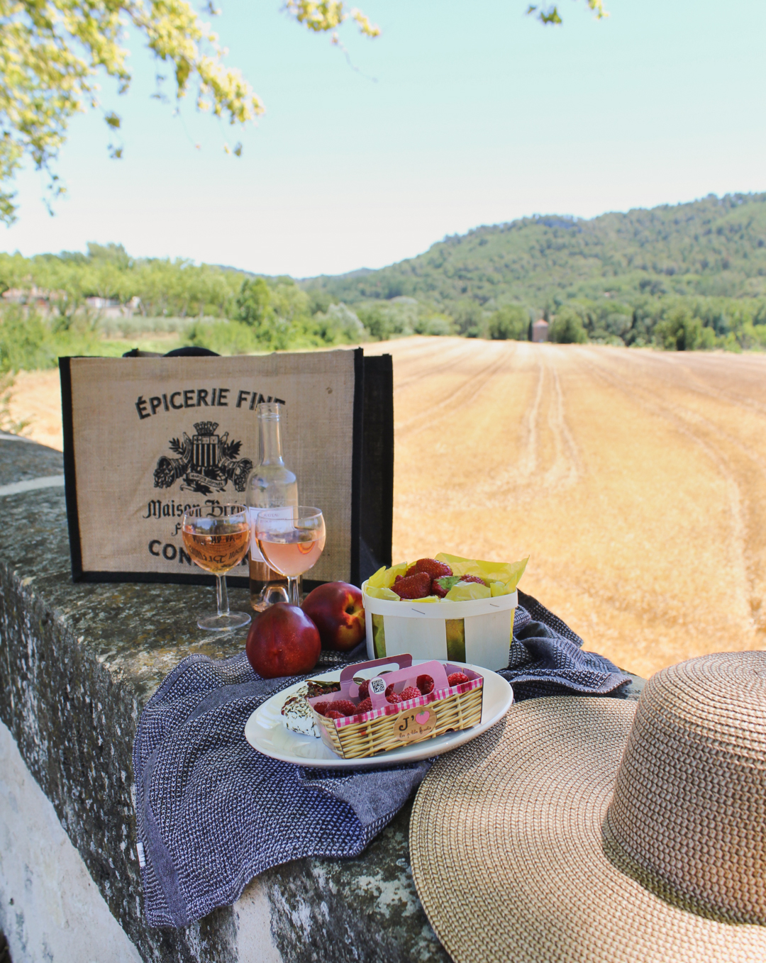 Picnic in Provence- Ansouis
