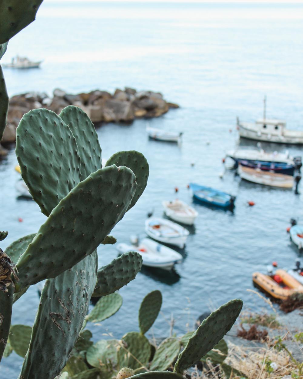 Cinque Terre Guide Riomaggiore