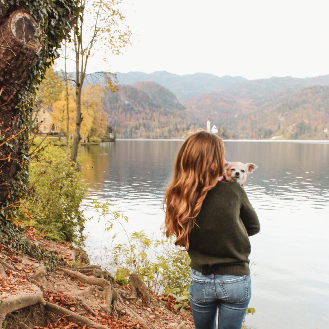 Lake Bled. Petite Suitcase
