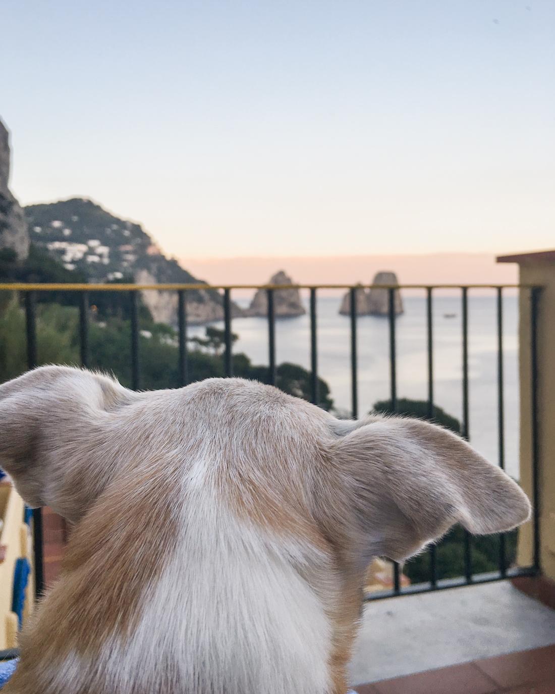Hotel Weber- Capri