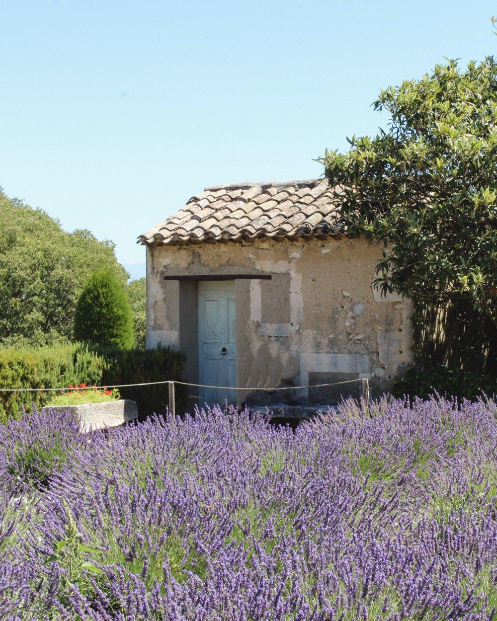 3 Day Provence Itinerary- Saint Remy