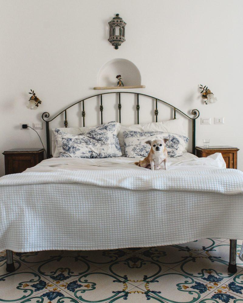 Where to Stay in Positano- Dimora del Podesta   hotel room with dog