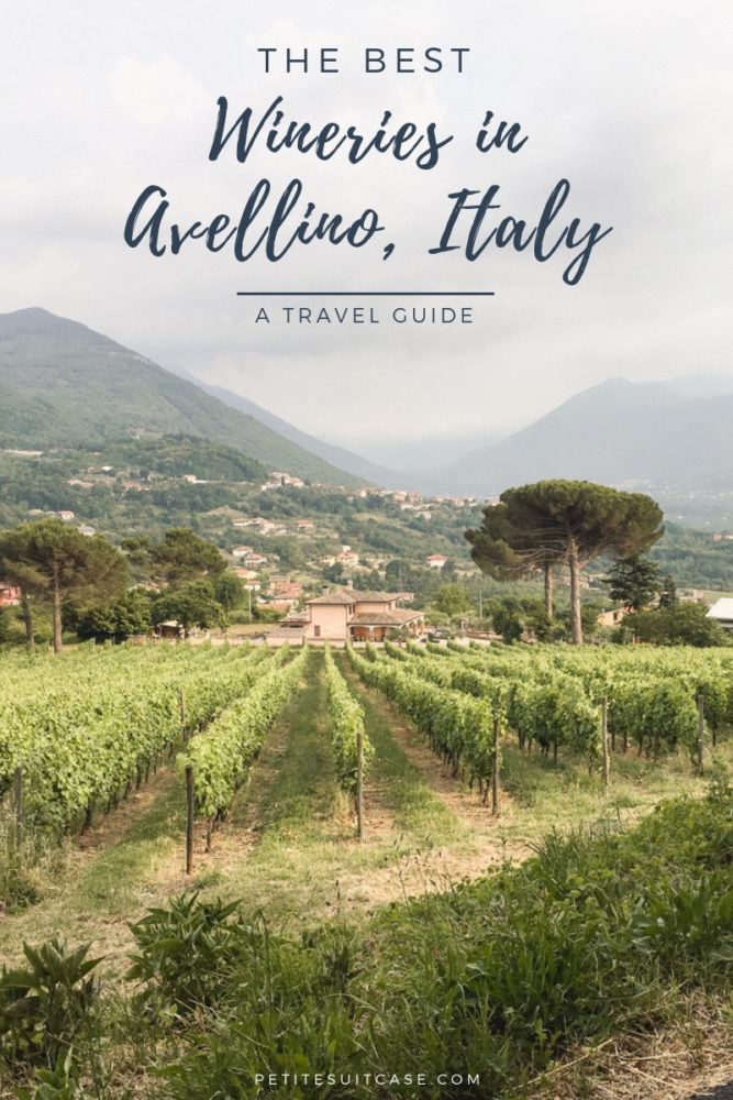 Travel Guide to Avellino, Italy | The best wineries in Irpinia. #italy Wineries in Italy.