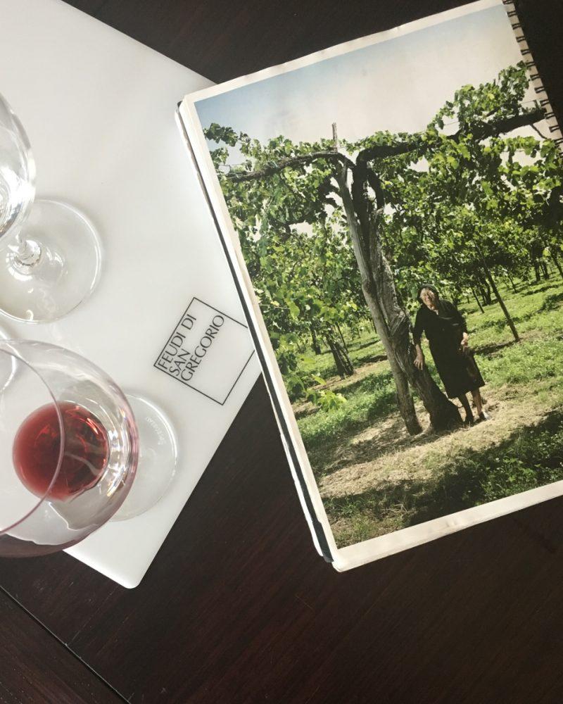 Avellino Wineries | Italy | Feudi di san gregorio