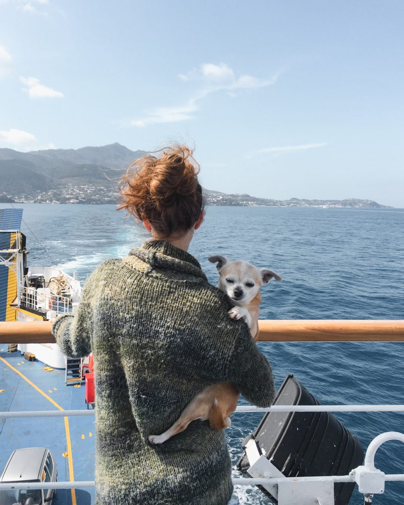 Ischia Ferry ride with dog