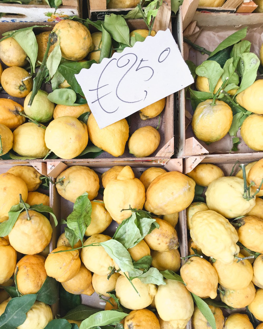 Things You Can't Miss in Sorrento | Amalfi Lemons #italy