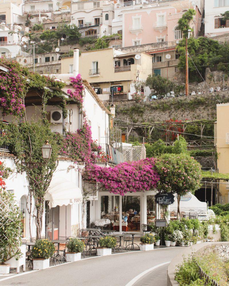 bougainvillea in Positano, Italy